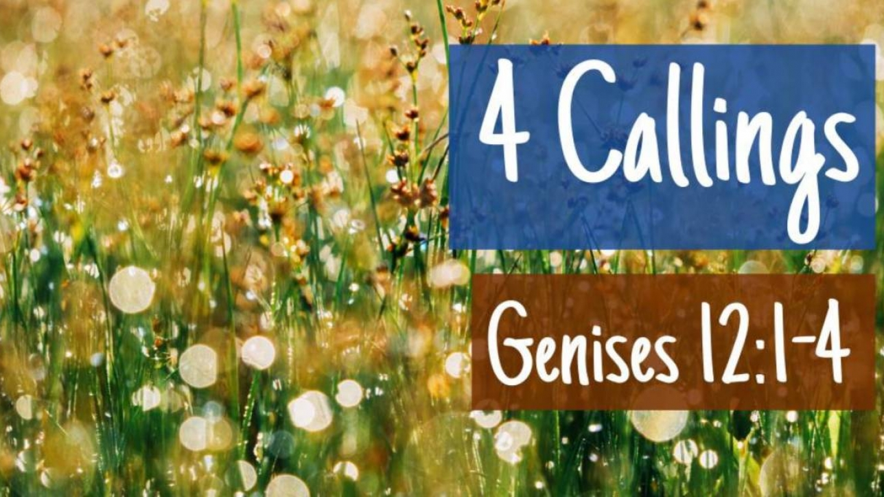 Sunday 23rd June at 11am