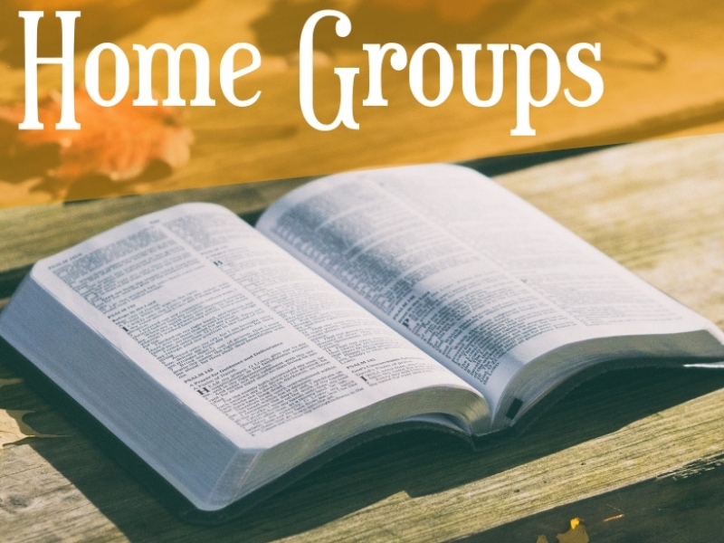 Home groups Icon